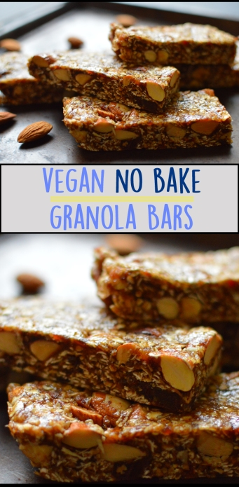 Vegan Granola Bars - No Bake! - Almond Butter & Oatmeal - Rich Bitch Cooking Blog