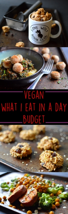 """Vegan What I Eat In A Day - Budget (3#) - Chickpea Cookie Dough, Bean """"Meatball"""" Angel Hair, Banana Oatmeal Breakfast Cookies, Buddha Bowl - Rich Bitch Cooking Blog"""