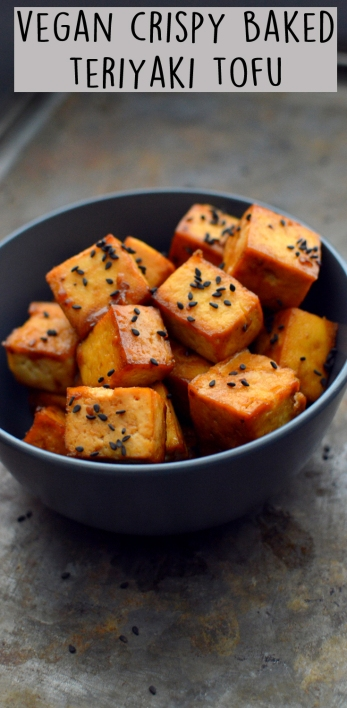 Vegan Teriyaki Baked Tofu - Rich Bitch Cooking Blog
